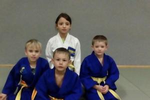 ASKÖ Bad Goisern Judo_1
