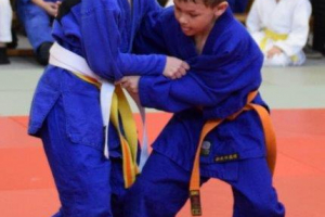 Judo Goisern_2